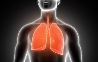 Особый тип иммунных клеток легких может защитить от реинфекции гриппа