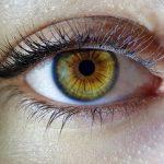 Ученые обнаружили 127 вариаций генов, связанных с развитием глаукомы