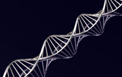 Исследователи обнаружили новый молекулярный механизм развития анафилактического шока